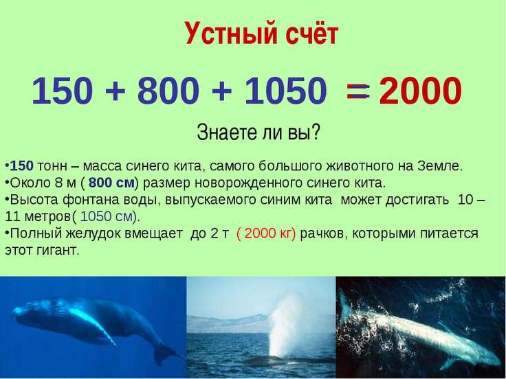 Устный счёт = 2000 150 + 800 + 1050 = Знаете ли вы? 150 тонн – масса синего к...