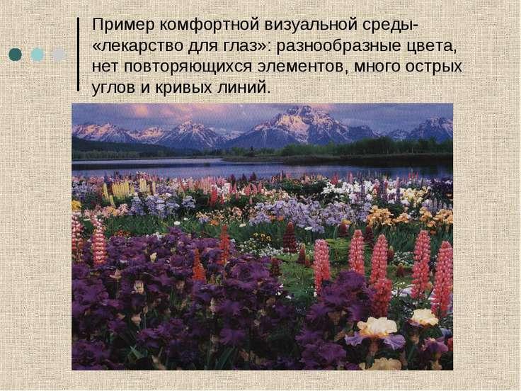 Пример комфортной визуальной среды- «лекарство для глаз»: разнообразные цвета...
