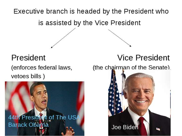 Executive branch is headed by the President who is assisted by the Vice Presi...