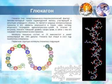 Глюкагон Глюкагон (син. гипергликемическо-гликогенолитический фактор) - белко...