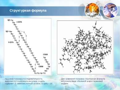 Структурная формула На схеме показана последовательность аминокислот в молеку...