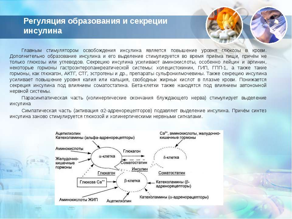 Регуляция образования и секреции инсулина Главным стимулятором освобождения и...