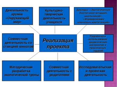 Реализация проекта Деятельность кружка «Окружающий мир» Разработка и использо...