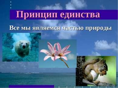 Принцип единства Все мы являемся частью природы