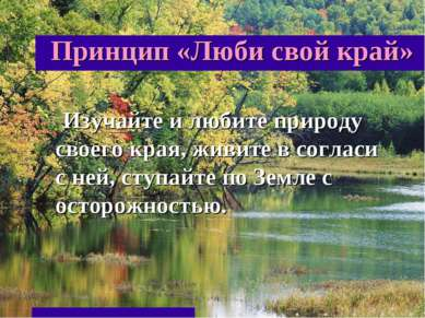 Принцип «Люби свой край» Изучайте и любите природу своего края, живите в согл...