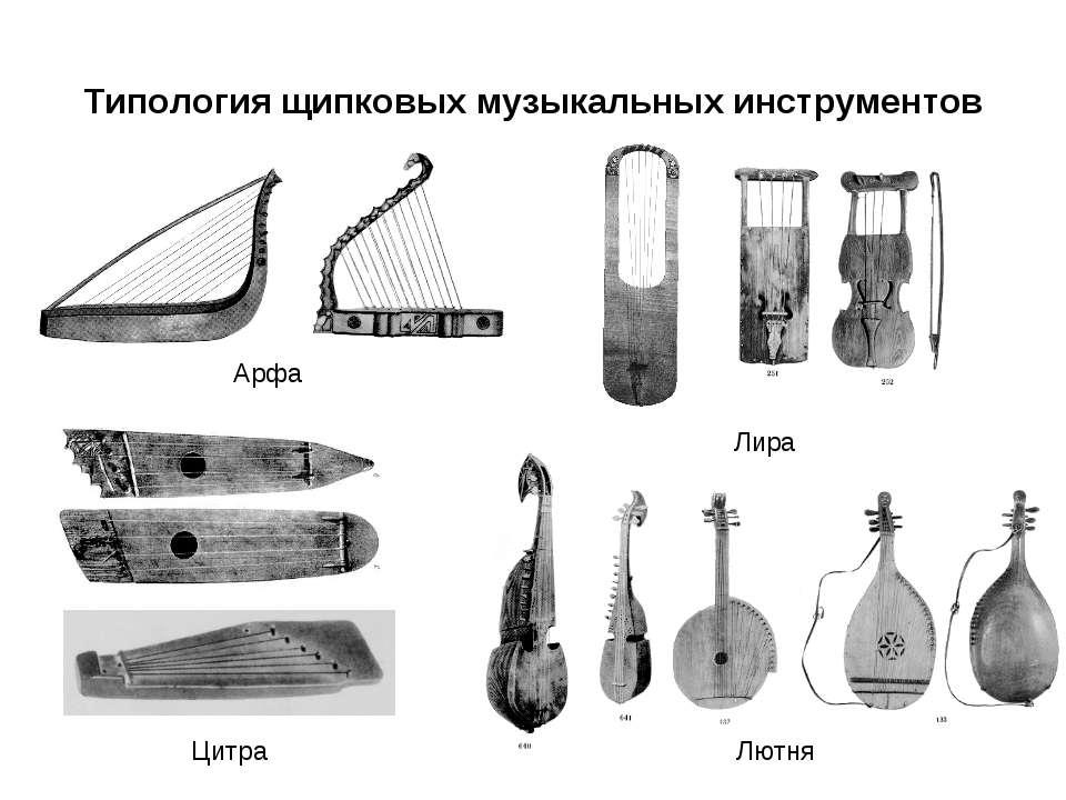 Типология щипковых музыкальных инструментов Арфа Цитра Лира Лютня