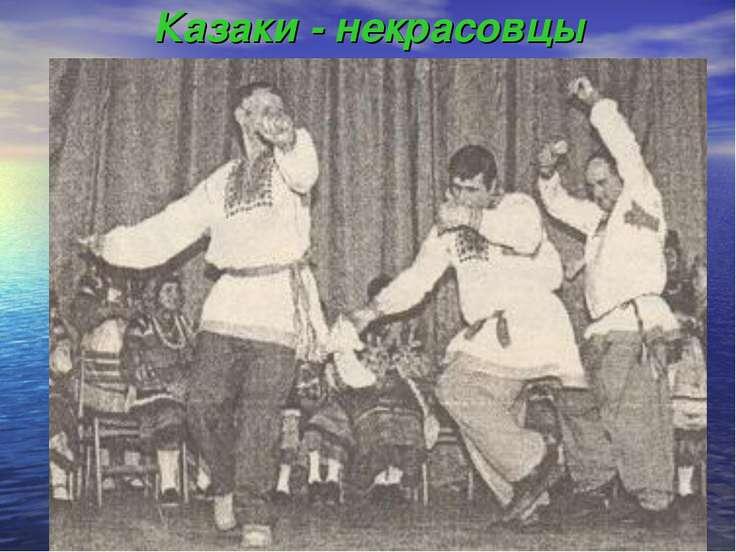 Казаки - некрасовцы