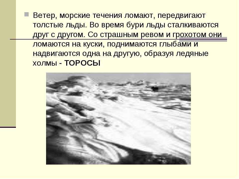 Ветер, морские течения ломают, передвигают толстые льды. Во время бури льды с...