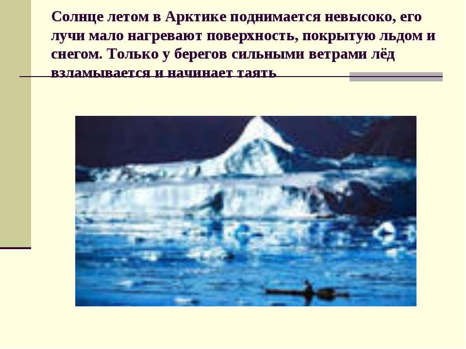 Солнце летом в Арктике поднимается невысоко, его лучи мало нагревают поверхно...