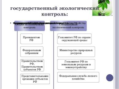 государственный экологический контроль: