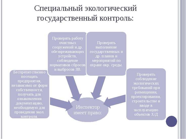 Специальный экологический государственный контроль: