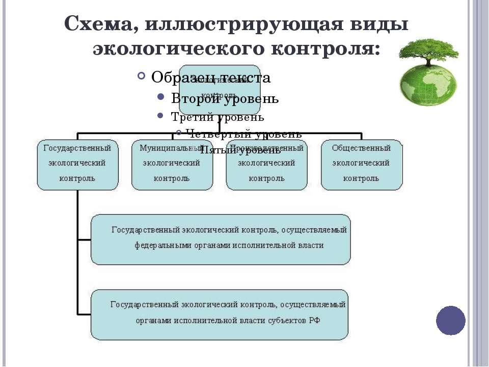 Схема, иллюстрирующая виды экологического контроля: