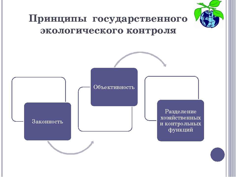 Принципы государственного экологического контроля