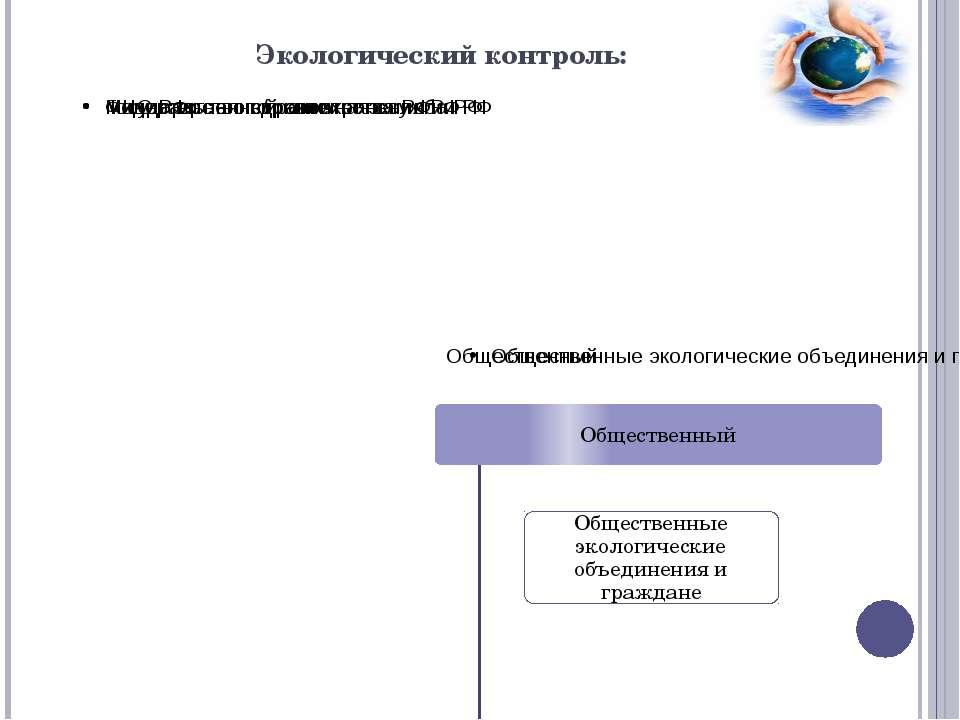 Экологический контроль: