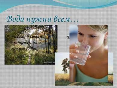 Вода нужна всем… Ее пьют поля и леса Человеку в сутки требуется более 2-х лит...