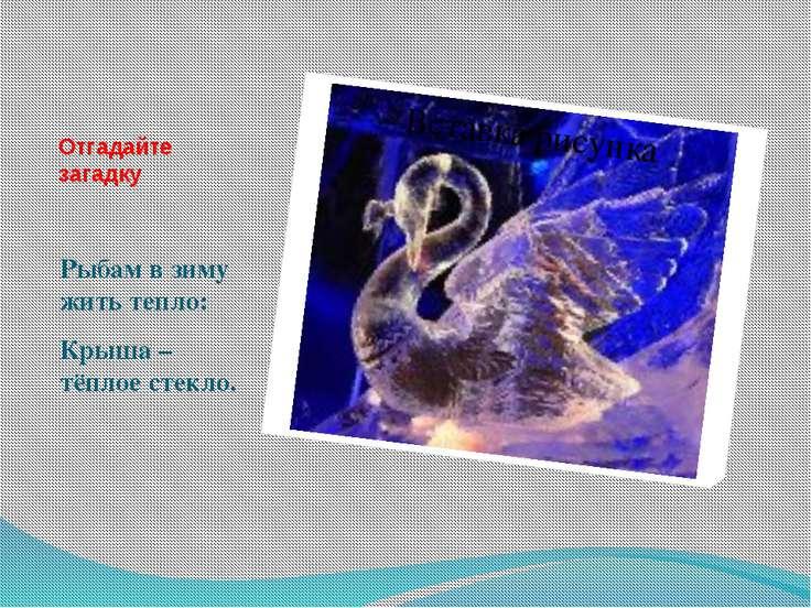 Отгадайте загадку Рыбам в зиму жить тепло: Крыша – тёплое стекло.