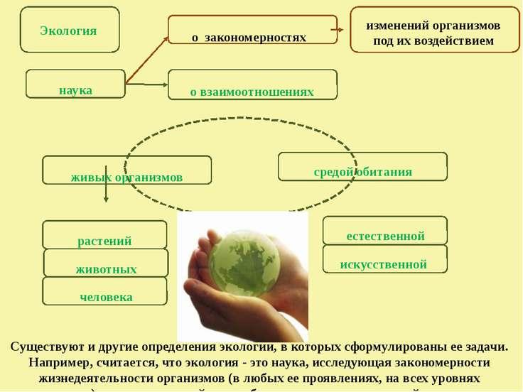 Экология наука о взаимоотношениях растений средой обитания животных человека ...