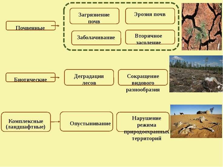 Почвенные Загрязнение почв Эрозия почв Заболачивание Вторичное засоление Биот...