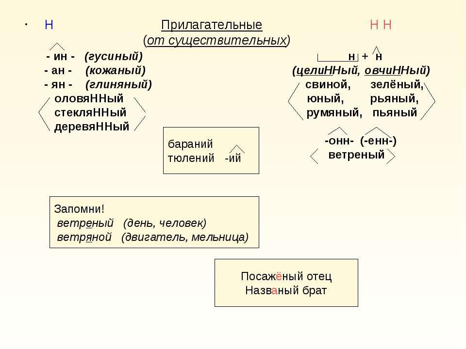 Н Прилагательные Н Н (от существительных) - ин - (гусиный) н + н - ан - (кожа...