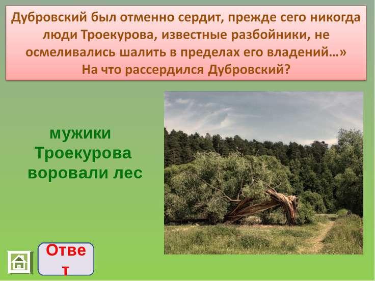 Ответ мужики Троекурова воровали лес