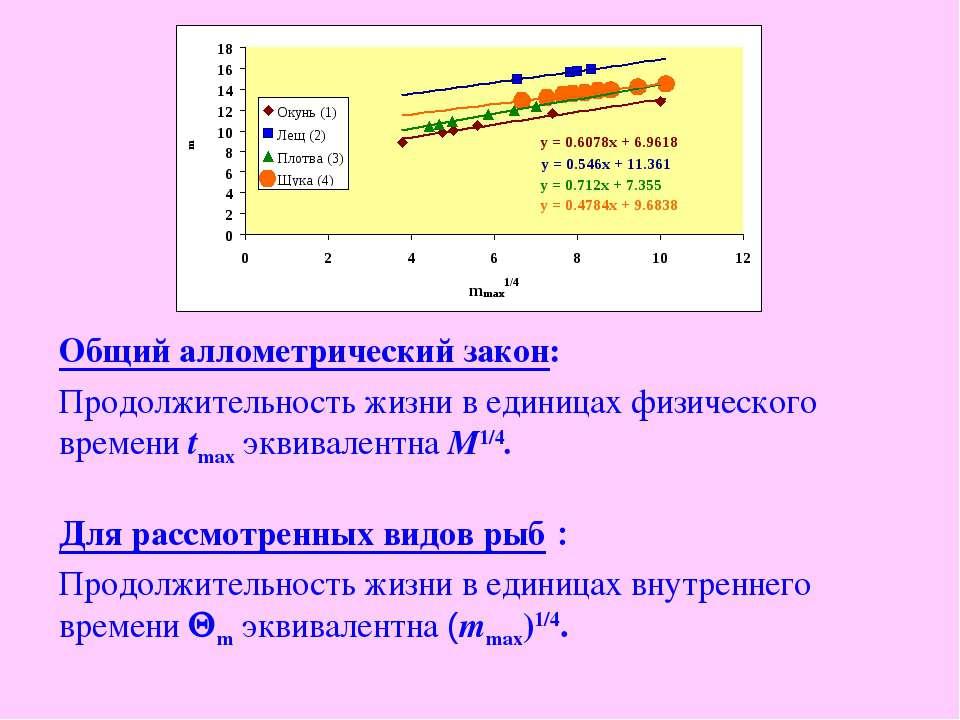 Общий аллометрический закон: Продолжительность жизни в единицах физического в...