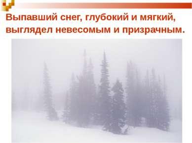 Выпавший снег, глубокий и мягкий, выглядел невесомым и призрачным.
