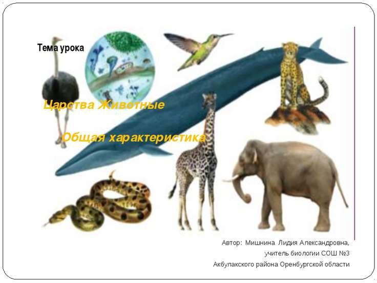 Тема урока Царства Животные Общая характеристика Автор: Мишнина Лидия Алексан...