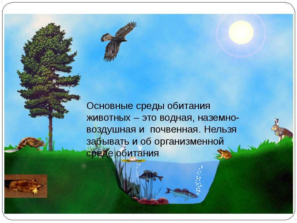 Среды жизни и места обитания Основные среды обитания животных – это водная, н...