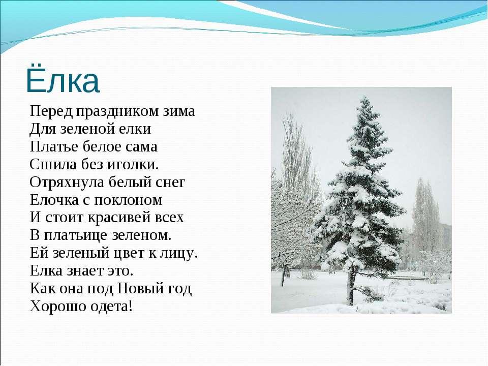 Ёлка Перед праздником зима Для зеленой елки Платье белое сама Сшила без иголк...