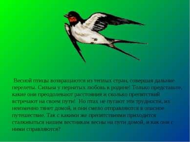 Весной птицы возвращаются из теплых стран, совершая дальние перелеты. Сильна ...