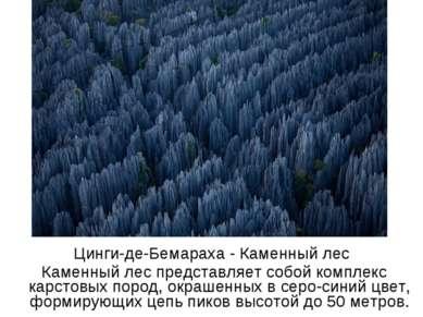 Цинги-де-Бемараха - Каменный лес Каменный лес представляет собой комплекс кар...