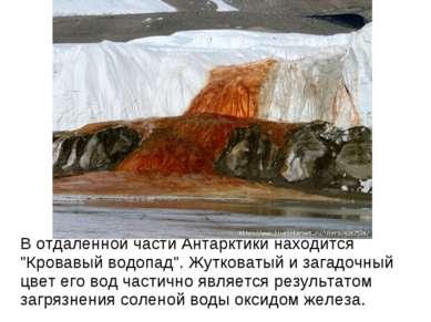 """В отдаленной части Антарктики находится """"Кровавый водопад"""". Жутковатый и зага..."""