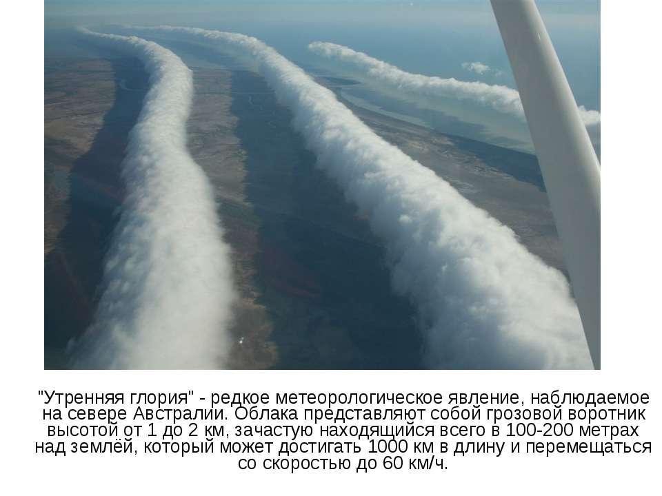 """""""Утренняя глория"""" - редкое метеорологическое явление, наблюдаемое на севере А..."""