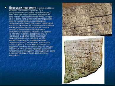 Береста и пергамент -берёзовая кора как материал для письма получает на Руси ...