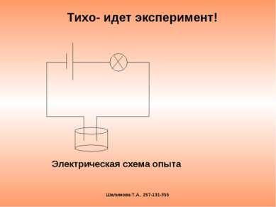 Тихо- идет эксперимент! Шалимова Т.А.. 257-131-355 Электрическая схема опыта