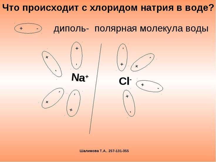 диполь- полярная молекула воды Что происходит с хлоридом натрия в воде? Шалим...