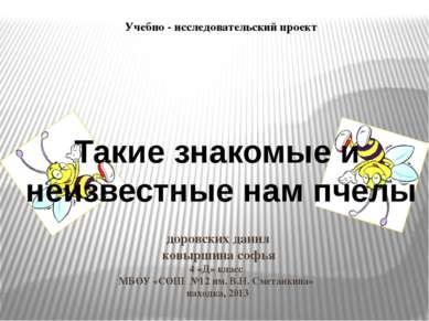 доровских данил ковыршина софья 4 «Д» класс МБОУ «СОШ №12 им. В.Н. Сметанкина...