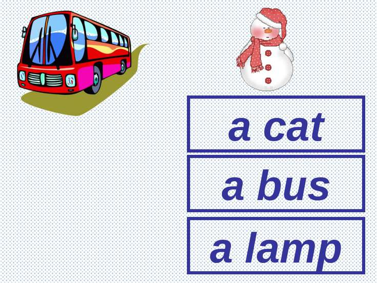 a cat a lamp a bus