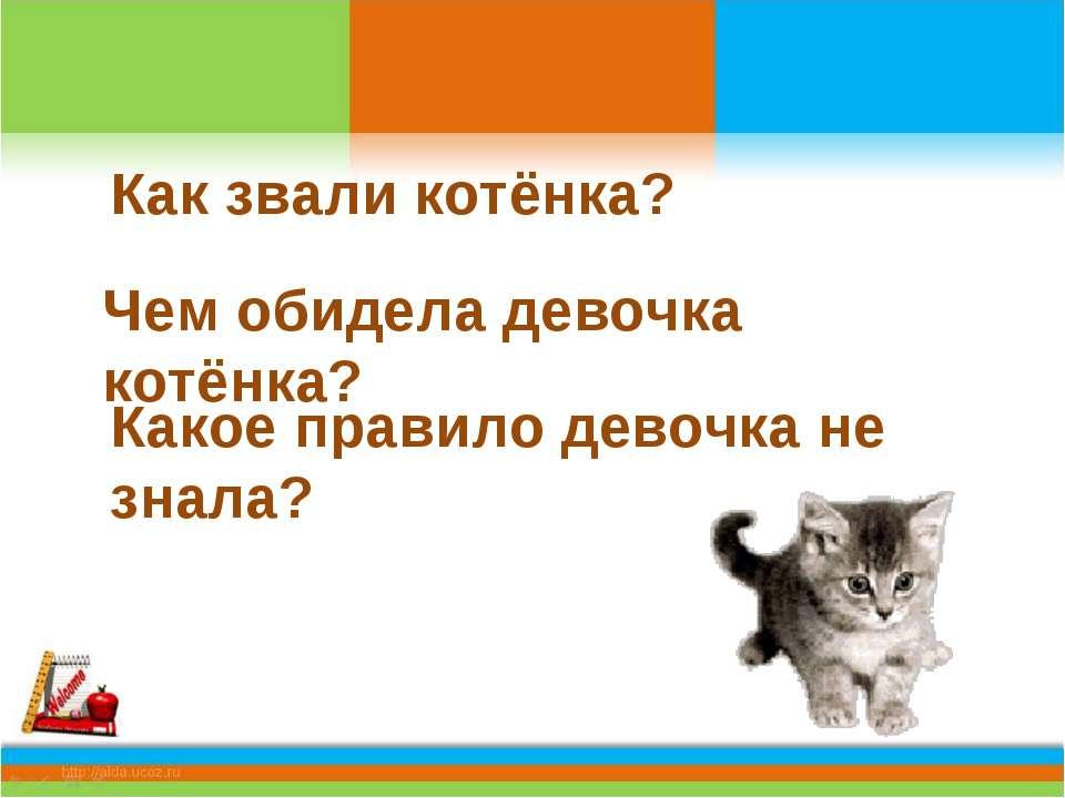 Как звали котёнка? Чем обидела девочка котёнка? Какое правило девочка не знала?