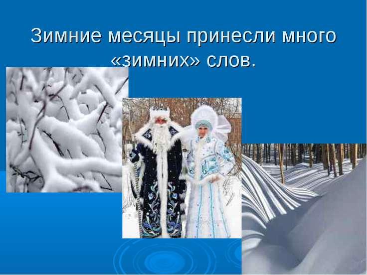 Зимние месяцы принесли много «зимних» слов.