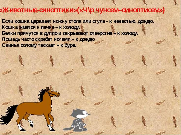 «Животные-синоптики»(«Ч\р чунсем–синоптисем») Если кошка царапает ножку стола...