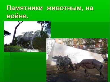 Памятники животным, на войне.
