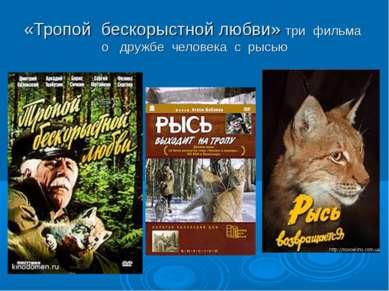 «Тропой бескорыстной любви» три фильма о дружбе человека с рысью