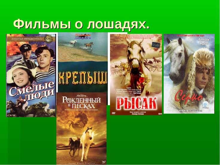 Фильмы о лошадях.