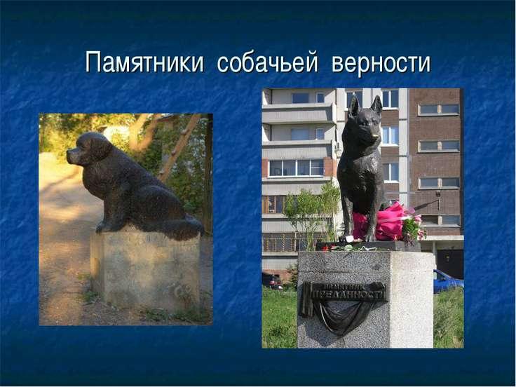 Памятники собачьей верности