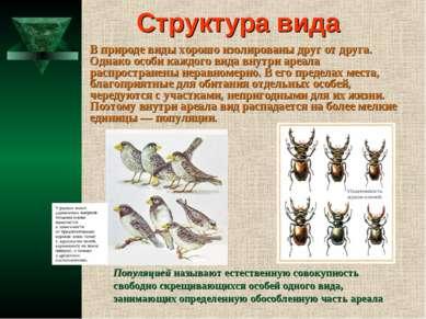Структура вида В природе виды хорошо изолированы друг от друга. Однако особи ...