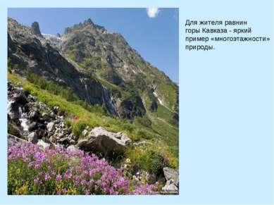 Для жителя равнин горы Кавказа - яркий пример «многоэтажности» природы.