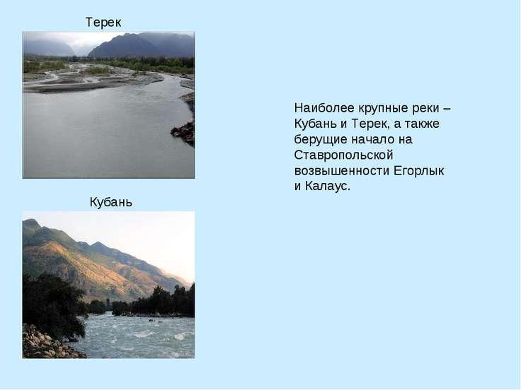 Наиболее крупные реки – Кубань и Терек, а также берущие начало на Ставропольс...