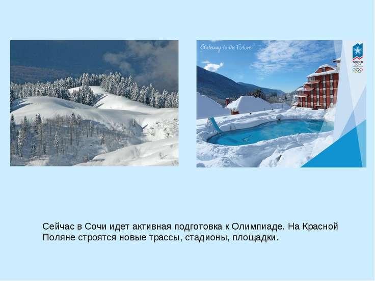 Сейчас в Сочи идет активная подготовка к Олимпиаде. На Красной Поляне строятс...