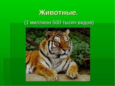 Животные. (1 миллион 500 тысяч видов)